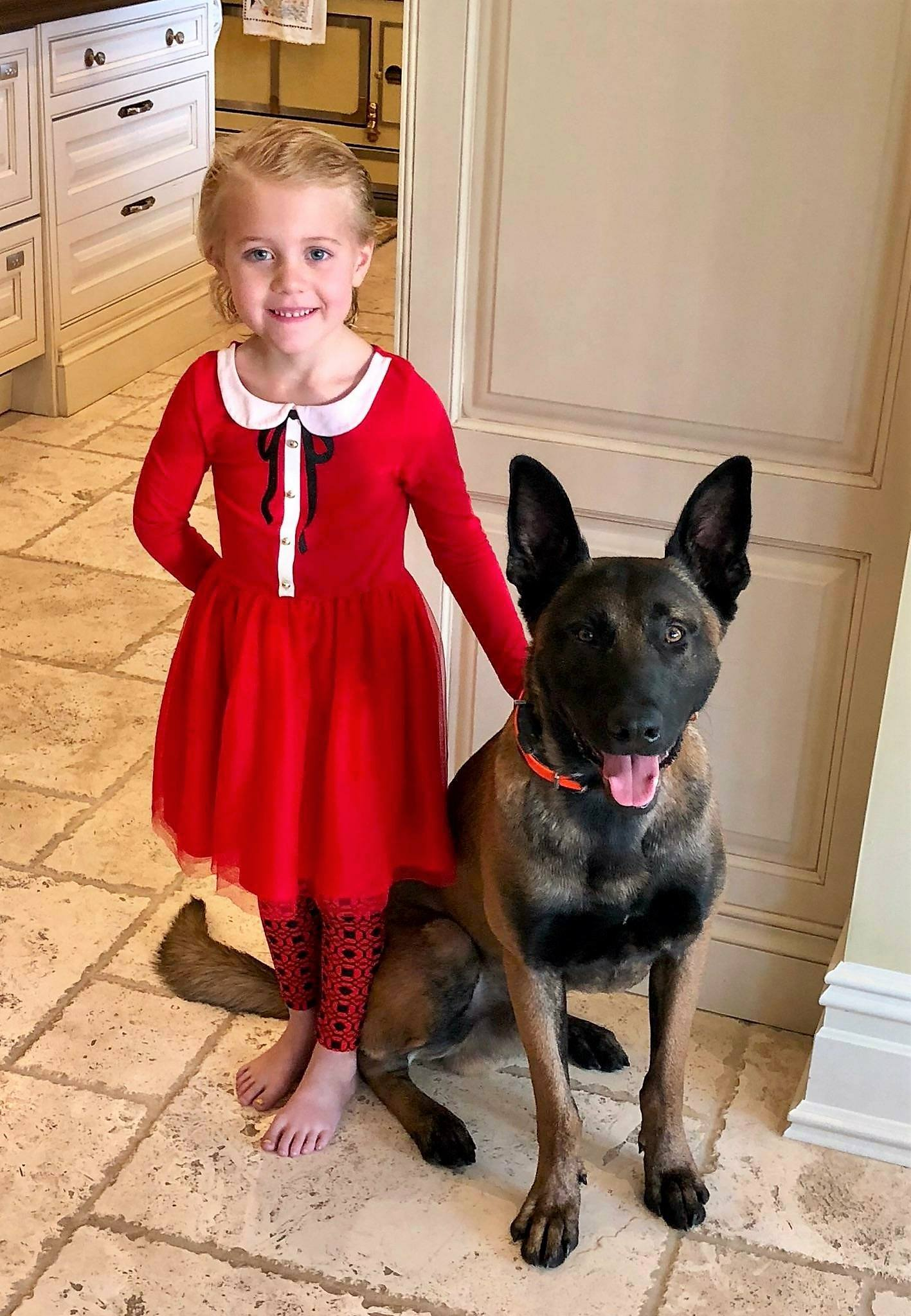 best guard dog for children